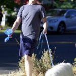 Pasje vrečke in pasji iztrebki