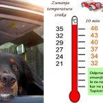 Toplotni udar pri psu