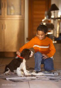 Hišna čistoča psa, časopisna metoda