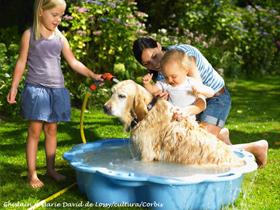 Kopanje psa in skrb  za njegovo čistočo