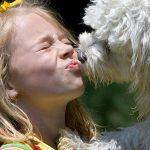 Pasji poljubček da ali ne