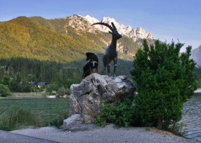 Jezero Jasna, dva kozla