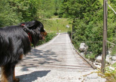 Log pod Mangartom, most čez Loško Koritnico