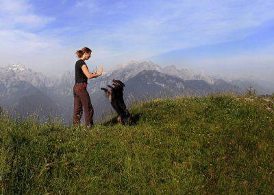 Planina Rožca, razgled na Triglav, Pasji horizont