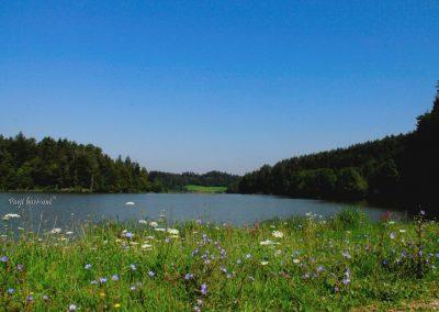 Izlet na Gradiško jezero