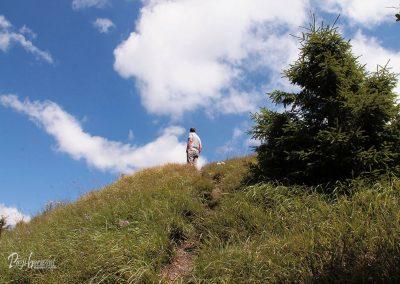 Javorjev vrh, malo naprej od skrinjice