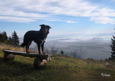 Kališče, razgled na dolino