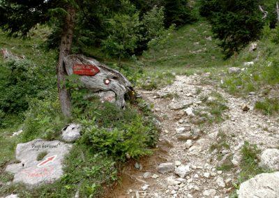 Planina Korošica, mimo označbe na Košutico