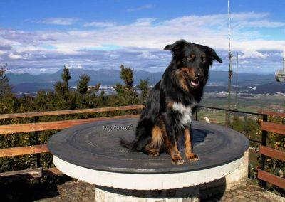 Krim, vrh, koča, razgledna ploščad, Pasji horizont