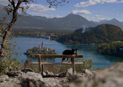 Izlet Ojstrica in Bled