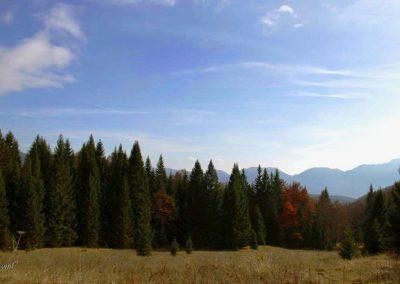 Planina Spodnja Grintavca