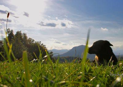 Rašica, jesenski razgled s hriba