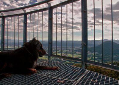 Vrh Staneta Kosca, stolp, razgled na Ljubljansko kotlino