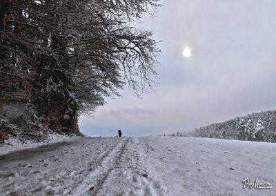 Izlet Rašica v snegu