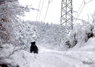 Rašica; snežni razgled