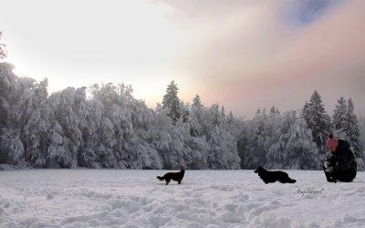 Sračja dolina, zimska pravljica