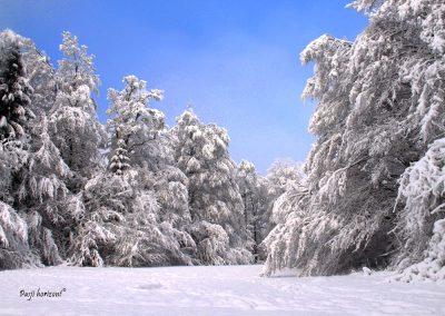 Sračja dolina v celem snegu
