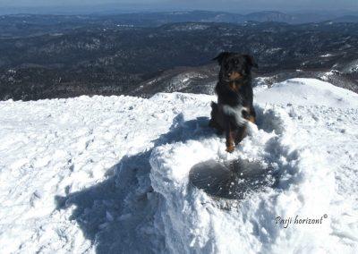 Veliki Snežnik, plošča na vrhu, Pasji horizont