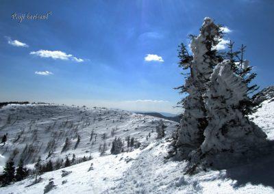 Pogled naprej ob spustu iz Velikega na Mali Snežnik
