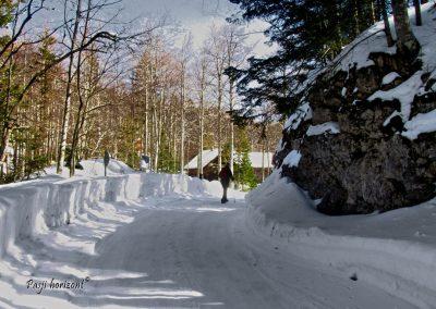 Začetek poti na Snežnik, Sviščaki