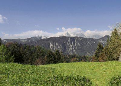 Planina pod Golico