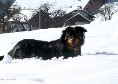 Sveta Katarina v snegu