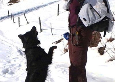 Sveta Katarina, sneg, zima, pasja igra