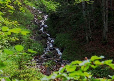 Trupejevo poldne, Srednji vrh, potok