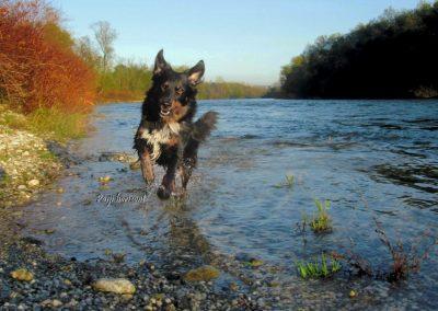 V reki Savi se kopamo