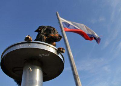 Izlet Stolp na Zaplani; zastava