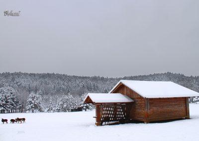 Izlet Sračja dolina, koča, zima in sneg