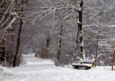 Izlet Sračja dolina, pot, klopca, zima in sneg