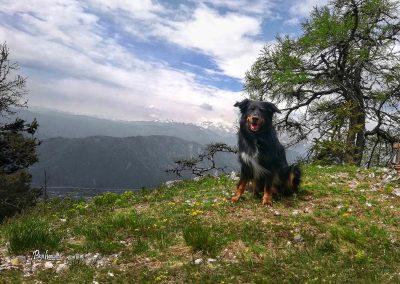 Razgled nad kočo Neža, planina Stamare