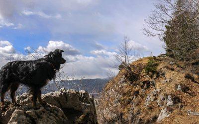 Smokuški vrh (Sv. Peter, Sankaška koča)