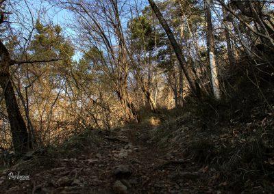 Polhov Gradec, pot na na Polhograjsko Grmado