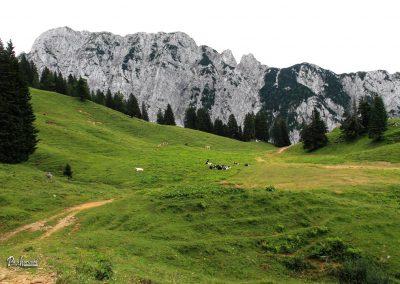 Planina Korošica, razgled na Veliki vrh in greben Košute