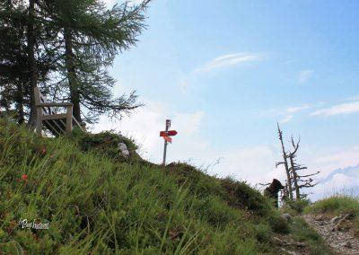 Klopca na razpotju Obel kamen in Govca (Olševa)