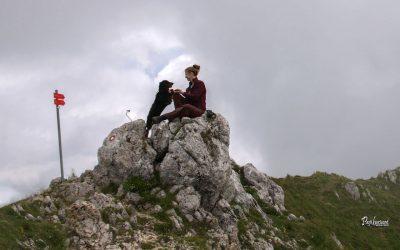Potočka zijalka in Govca (Olševa)