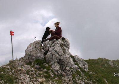 Govca (Olševa), vrh