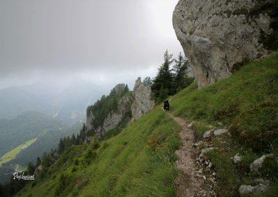 Olševa, prečenje na poti z Govce, Pasji horizont