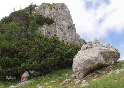Olševa, smerni kamen s stožci na poti proti Govci