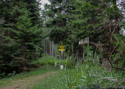 Podolševa, pot na Potočko zijalko, državna meja z Avstrijo