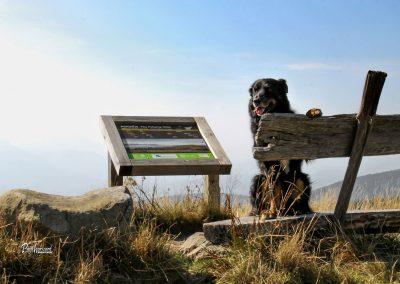 Črni vrh, klopca, info tabla, Ribniško Pohorje