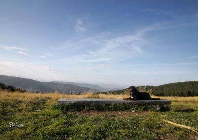 Ribniško Pohorje, klopca na izhodišču