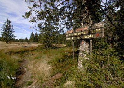 Lovrenška jezera, tabla, gozdni rezervat