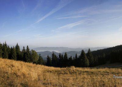 Ribniška koča, panorama, Ribniško Pohorje