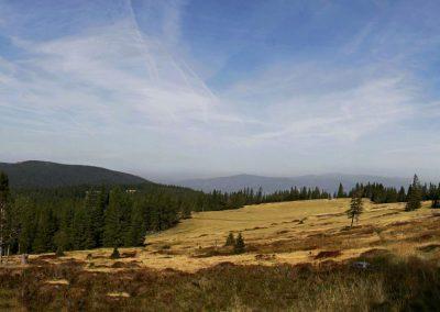Ribnisko Pohorje, gozdni rezervat, panorama